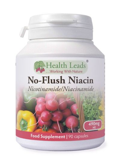 HEALTH LEADS NO-FLUSH VITAMIN B3 (NICOTINAMID/NIACINAMID) 490 MG X 90 KAPSELN