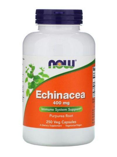 Now Foods Echinacea 400 mg, 250 vegetarische Kapseln