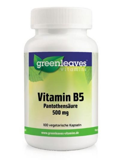Green Leaves VITAMIN B5 PANTHOTHENSÄURE 500 MG 100 Kapseln